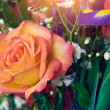 Colorful roses — Stock Photo #46106803