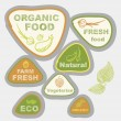 Vector icons, labels, on theme of ecology, fresh food, vegetarian, natural, organic. — Stock Vector #25745357