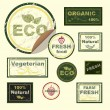 Vector icons, labels, on the theme of ecology, fresh food, vegetarian, natural, organic. — Stock Vector #25745363