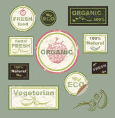 Vector icons, labels, on the theme of ecology, fresh food, vegetarian, natural, organic. — Stock Vector