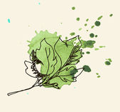 Vector watercolor hand drawn vintage illustration of leaf — Stock Vector