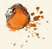 Vektor akvarell hand dras vintage illustration av tomat — Stockvektor