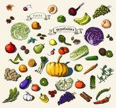 手描きの野菜、フルーツ — ストックベクタ