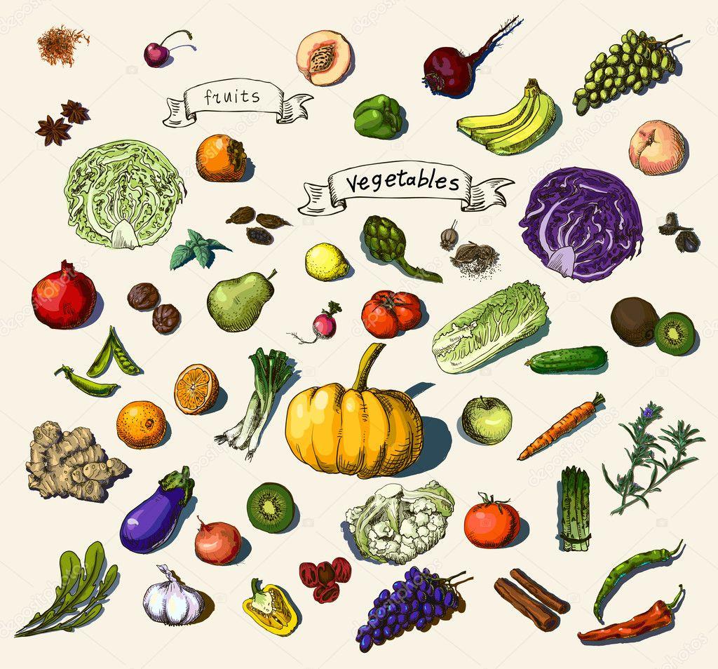 矢量图的一整套的手绘的蔬菜, 水果 — 矢量图片作者 mamziolzi