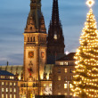 Stock Photo: Hamburg, Germany, City hall with Christmass tree