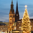 Hamburg, Germany, City hall at chrismass — Stock Photo