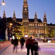 Vienna, Austria, Iceskater and Old Town Hall in Winter — Stock Photo
