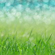 Stock Photo: Spring. holiday background