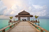 Maldivian beach — Stock Photo