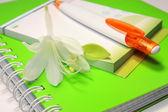 Caderno com caneta e flor — Fotografia Stock
