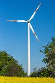Erneuerbare energie — Stockfoto