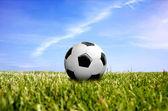 Uma bola na grama verde — Foto Stock