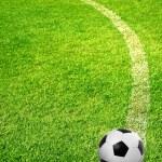 A ball on football field — Stock Photo #33493247