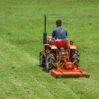 Stock Photo: Cutting grass in soccer field