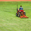 Stock Photo: Man on mower cutting grass
