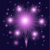 Beautiful fireworks. — Stock Vector