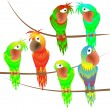 Stock Vector: Charming colorful parrots