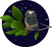 Owl on a branch — Stock Vector