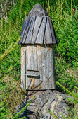 Beehives for wild bees — Fotografia Stock