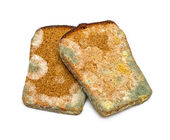 Mouldy rye bread — Stock Photo