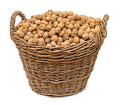 Walnuts in big basket isolated — Foto Stock