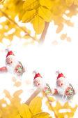 Santa new year — Stock Photo