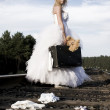 Runaway bride - Stock Photo