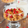 Granola with red berries — Stock Photo
