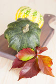 Autumn decoration with maple leaves and pumpkins — Stock Photo