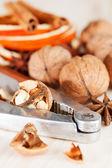 Walnut and nut cracker — Stock Photo