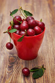 Sweet cherries in red cup — Stock Photo