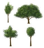Vector Trees Set — Stock Vector