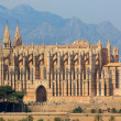La Seu cathedral in Plama — Stock Photo