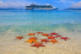 Cruise ship and starfish — Stock Photo