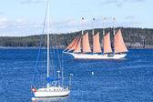 与粉红色风帆游艇 — 图库照片