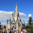 Stock Photo: Disney World in Orlando