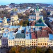 Stock Photo: Lviv old town from above