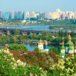 Kiev blooming in spring — Stock Photo