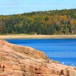 Rocky coastline of Acadia national Park — Stock Photo