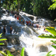 Stock Photo: Climbing Dunn's river falls in Jamaica