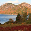 Acadia National Park in autumn — Stock Photo #26164911