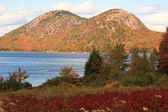 Acadia National Park in autumn — Stock Photo