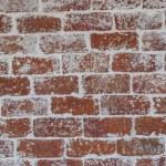 Brick wall — Stock Photo #30796765
