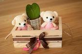 Bear doll — Stock Photo
