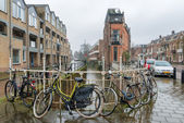 Rainy day in Netherlands — Stock Photo