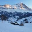 Grindelwald, Swiss Alps — Stock Photo