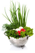 Fresh vegetables in the bowl — Stock Photo
