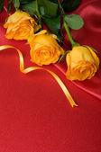 Gele rozen op rood satijn — Stockfoto