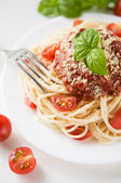 Pasta with tomato sauce, tomatoes and cheese — Stock Photo