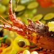 Crayfish — Stock Photo #25973025